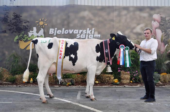 Champion 2016 (Croatia)