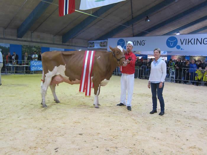 Stortoft Holstein TAlent Beth, EX -94